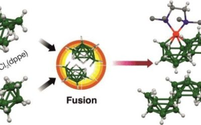 Macropolyhedral Nickelaboranes from the Metal-Assisted Fusion of KB9H14